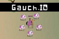 Gauch.io
